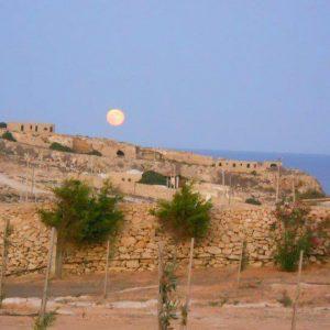 Luna dal Dammuso